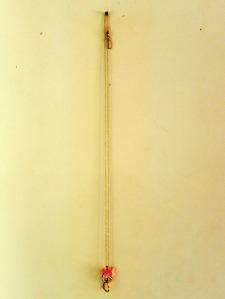 DSCN6313